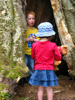 nature courses for children in Aberdeen