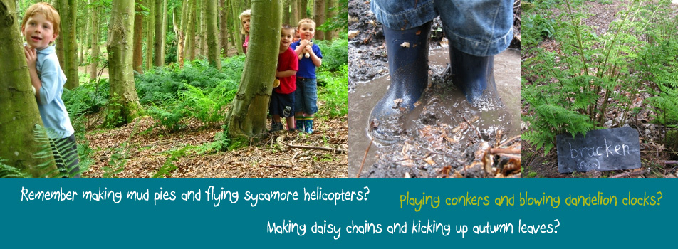 Our Mud Pie sessions aim to help 2-5 year olds find out and understand more about their natural environment with a series of hands-on, fun activities in Aberdeen and Aberdeenshire – including, of course, making mud pies